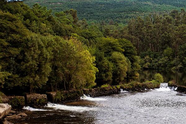 """""""Pesqueiras"""" on the Ulla River"""