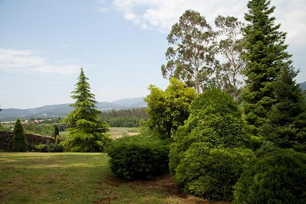 Paidea Foundation garden